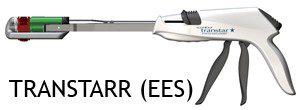 TRANSTARR-EES-ccs30